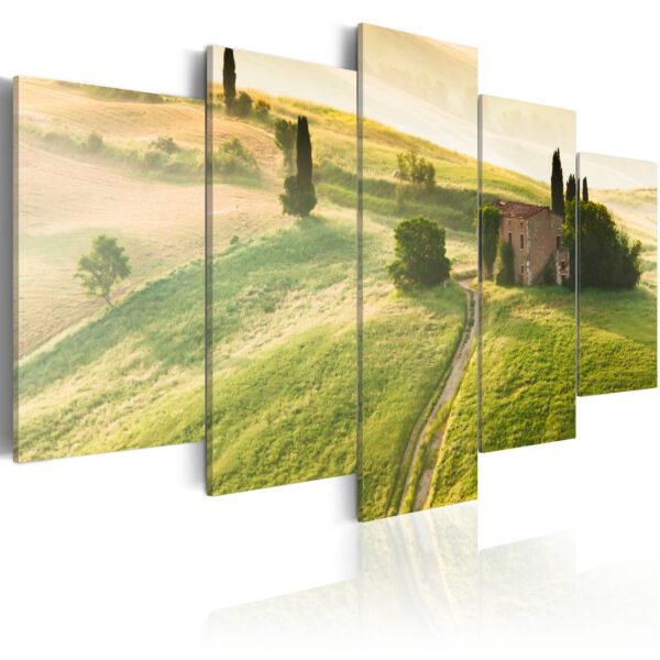 ARTGEIST Green Tuscany - Billede af Toscana i smukt sollys trykt på lærred - Flere størrelser 100x50